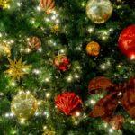 クリスマスデート、田舎に住むカップルが8倍ラブラブになれる過ごし方